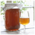 Packung 100g Wasserkefir Pilz / Japankristalle + Kombucha Pilz / Scoby